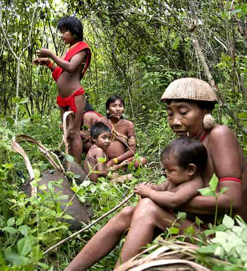 Tribal family in the forest